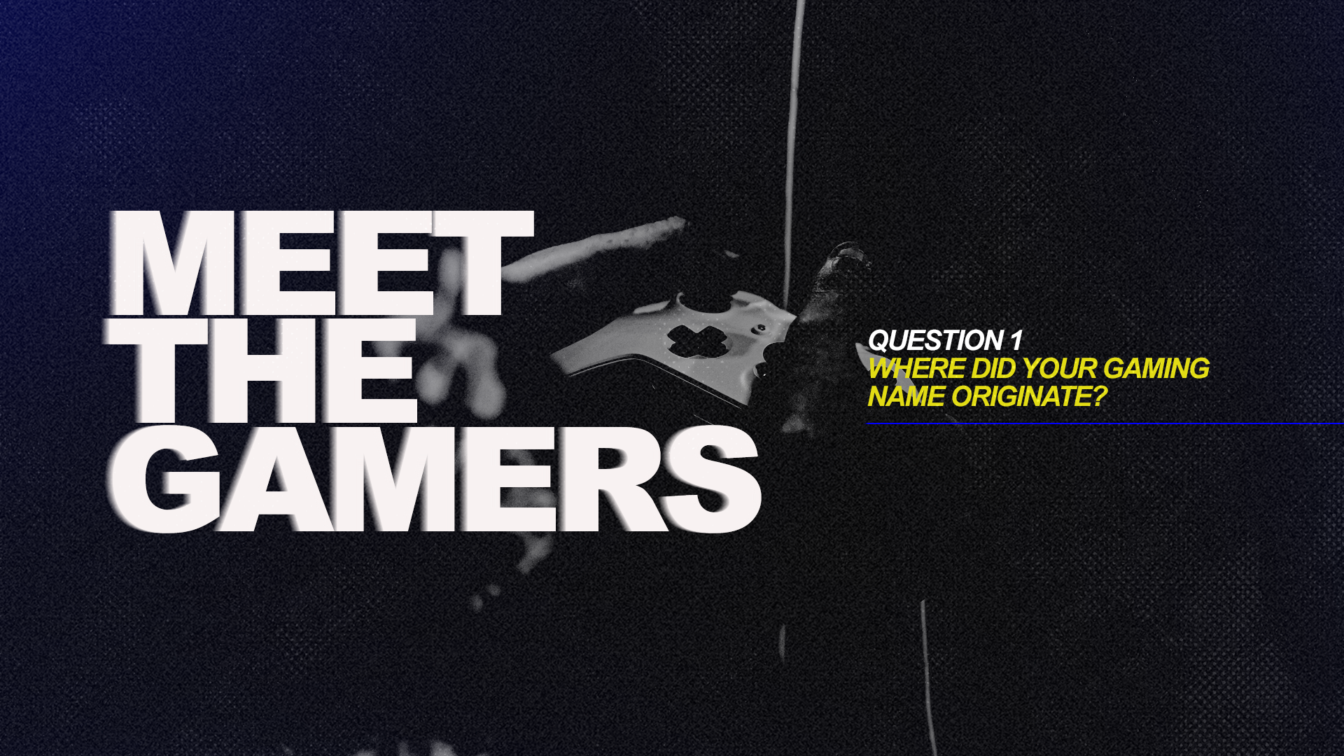 meet the gamers 1